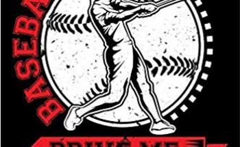 Small baseball butts journal